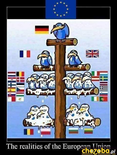 Hierarchia wUE