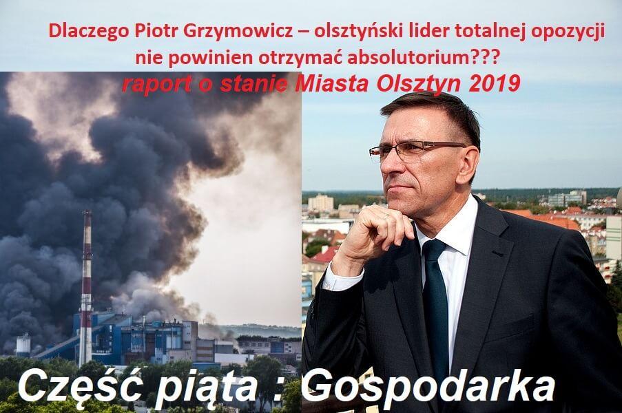 Piotr Grzymowicz - gospodarka