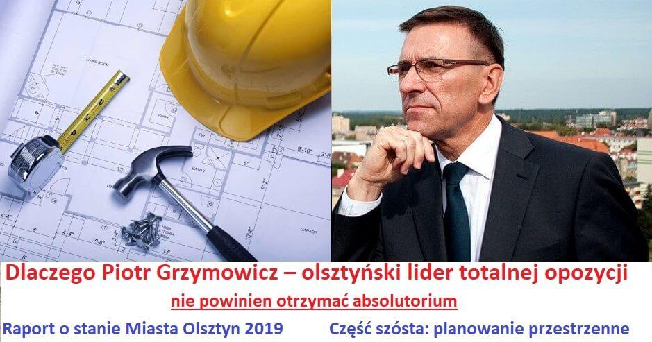 Piotr Grzymowicz - absolutorium
