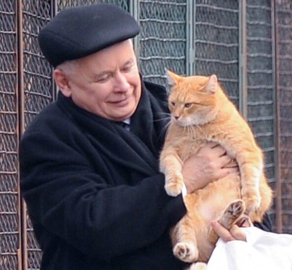 Prezes z kotem Feliksem