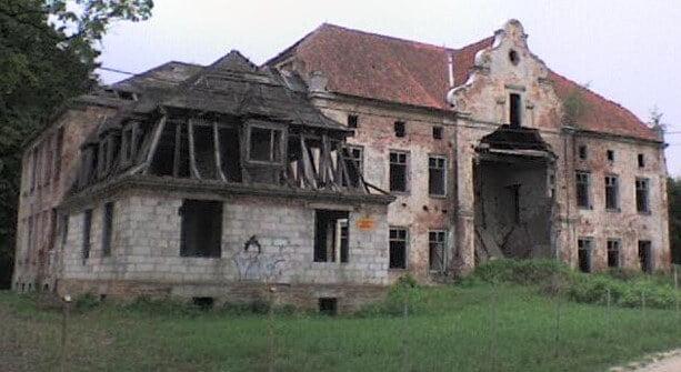 Zrujnowany pałac wJanuszewie (stan w2010 roku)